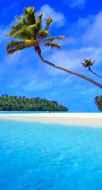 Carribean