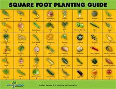 Limited space? How about Square foot gardening?!This plan resembles an 8ft by 6ft garden, each number in the square is about how many of that particular plant will fit in that square foot.   Also a great idea for those experimenting with different or new varieties to their area, instead of wasting valuable garden space on something new, try a square foot garden with unusual choices to determine what thrives for the following season! From Backyard Gardener.