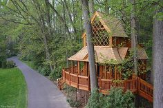 """Author, teacher and treehouse builder, Pete Nelson, has built more than 200 wooded wonders. From snug hideaways to bed and breakfasts, he's beautifying homes, highways, and the hotel industry. """"I'm all about putting adults in trees,"""" says Nelson. He's also built one of the first hotels to live amongst the trees, a bed and breakfast called Treehouse Point (slides 1 and 3). Take a look at some of his most dream-inducing creations."""