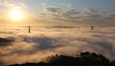Taylor's Best of Marin: Top 10 Must Eat Meals Before You Die!   Travel Tips