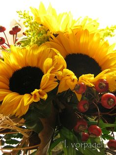 Sunflower Bouquet by dolphyn722...beautiful
