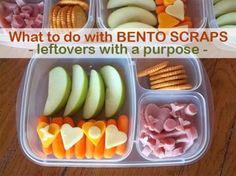 what to do with leftover bento scraps