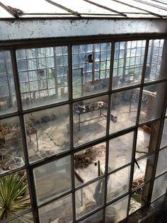 window, loft