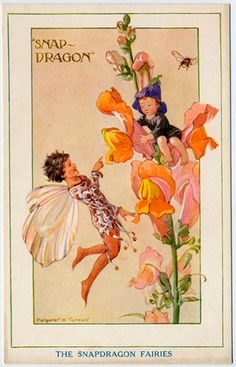 The Snapdragon Fairies by Margaret Tarrant