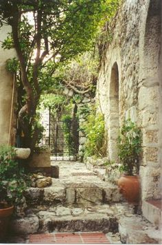 Eze, France...was such a amazing little medieval village.