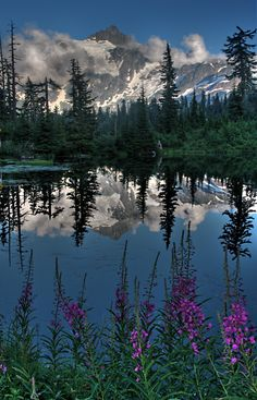 Mount Shuksan,North Cascades National Park, Washington.