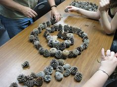 Creating designs with pine cones-Debra Murphy photo