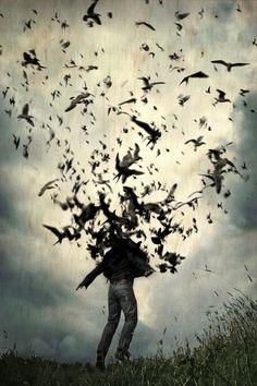 tattoo ideas, the raven, dream, digital art, crow, artist, birds, artwork, tomasz wieja