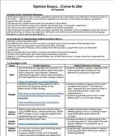 persuasive essay examples 5th grade
