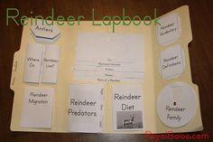 Reindeer Lapbook free reindeer, christma activ, kid fun, reindeer lapbook, christma idea, aiden educ, school idea, kid thing, homeschool lapbook