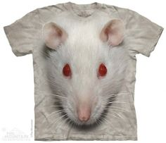 Big Face White Rat T-Shirt at theBIGzoo.com, an animal-themed store established in August 2000.