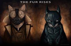 Bane & Batman Supercats