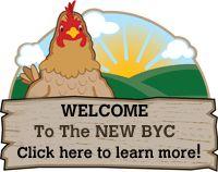 Backyard Chickens . com!