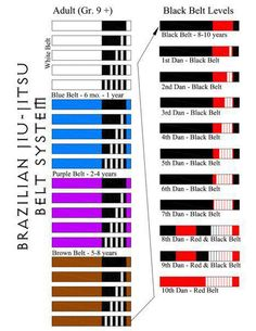 Good graphic of BJJ belt progression.