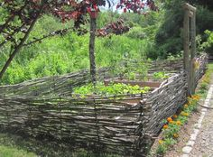 low-maintenance fencing...thinking of my niece and her fledgling community of gardeners...