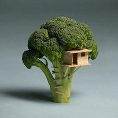 Broccoli Tree House