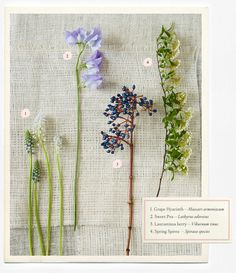 Flowers provided by Sullivan Owen for BHLDN   Wedding Flowers Guide – Types & Ideas | B-Inspired | BHLDN