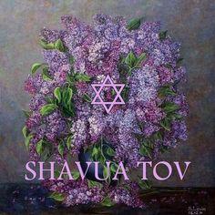Shavua Tov - Have a good week!