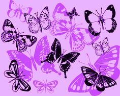 Lupus butterfly angels.