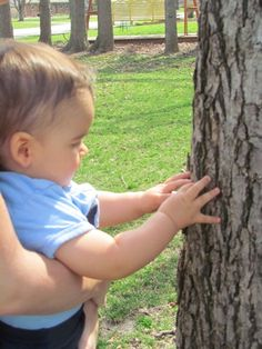 Take your baby on an outdoor texture walk! Visit pinterest.com/wonderbabyorg for more activity ideas for blind kids!