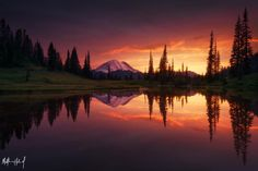 Growth [Matthew Hahnel] #landscape