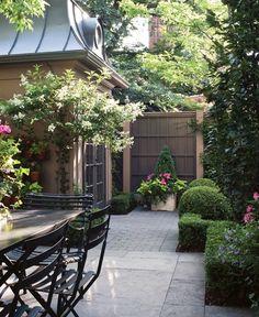 hedg, small backyards, patio, hous, photo galleries, courtyard, garden, design, yard ideas