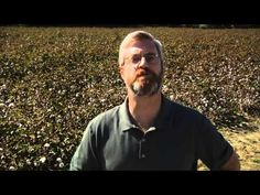 Eli Whitney How the Cotton Gin Changed America  (C2, Wk 13)