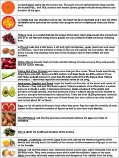 """Avocados, eggplant, pears- target the health  function of the womb  cervix of the female- they look just like these organs. Today's research shows that when a woman eats one avocado a week, it balance hormones, sheds unwanted birth weight,  prevents cervical cancers.  how profound is this? It takes exactly 9 months to grow an avocado from blossom to ripened fruit. There are over 14,000 photolytic chemical constituents of nutrition in each one of these foods (modern science has only studied  named about 141 of them)."""