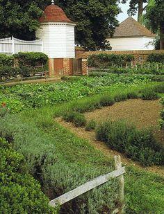 Mt. Vernon's kitchen garden.