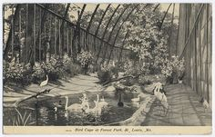 St. Louis Zoo Bird Cage from 1904 World's Fair