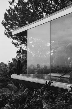 glasses, dreams, beach houses, fashion blogs, modern architecture