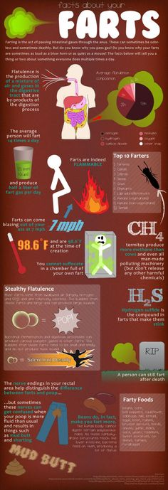 Contains several interesting facts about farts including what makes up a fart, how much we fart, and some of the animal kingdom's top farters.