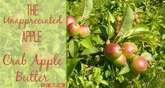 The Unappreciated Apple: Crab Apple Butter | The 104 Homestead