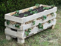* Lovely Greens *: How to Make a Better Strawberry Pallet Planter garden planters, strawberri pallet, pallet projects, strawberri planter, pallet planter, wooden pallets, wood pallets, old pallets, planter boxes