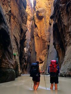 Hiking along the Virgin River in the Zion Narrows #BucketList