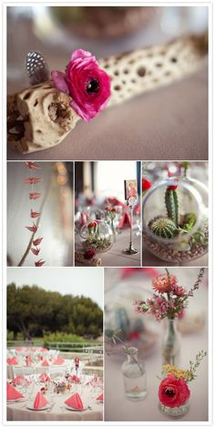 adorable wedding cacti and latin touches
