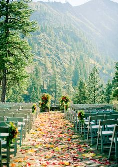 A wedding beneath the pines is the perfect way to bridge summer and winter.