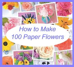 Tutorial Exchange Opportunity:  win this book on How to Make 100 Paper Flowers