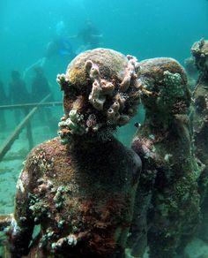 art coral, sculptures, underwat art, underwat sculptur, taylor