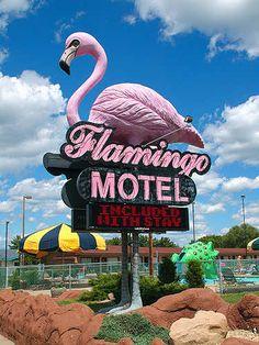 Flamingo Motel • Wisconsin Dells, Wisconsin