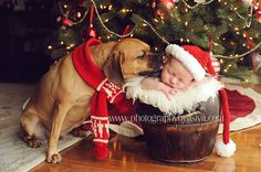 Xmas card idea with scarf for dog and hat for baby