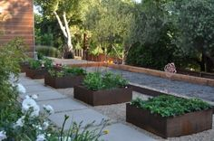 square stepping stones with gravel