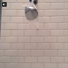 A rubber band, a plastic bag, vinegar and a few hours; that's all you need for a clean showerhead. #Vine #lowesfixinsix