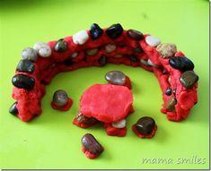 Playdough and Rocks
