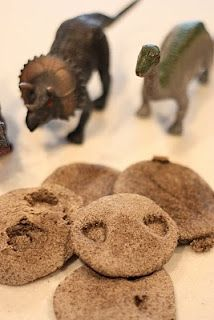 Coffee grounds dough fossils make great hands-on experimentation of the fossil forming and identification process. Easy to make, with endless application.