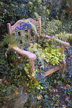 Chair garden ~ planted with perennials