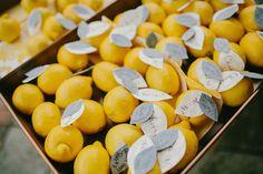 lemon escort cards, photo by Emily Delamater http://ruffledblog.com/marianmade-farm-wedding #weddingideas #seatingcharts