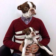 A dog person!