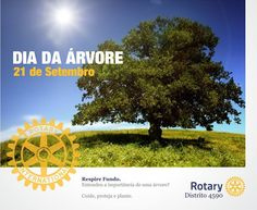 Rotary District 4590 used Rotary's visual guidelines for their materials promoting Arbor Day.