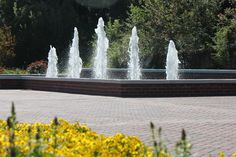Administration Building Fountains